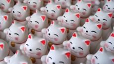 Bereits seit 1976 hält die kleine Katze mit der Schleife über dem Auge Einzug in Deutschland. Schon bei ihrer Einführung durch die japanische Firma Sanrio war sie nur dazu gedacht, […]