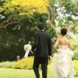 Die standesamtliche Heirat ist heutzutage sehr gefragt, immer mehr Paare lassen sich heute standesamtlich trauen: Hochzeiten im kleinen Rahmen mit den engsten Verwandten verleihen dem schönsten Tag des Lebens eine […]