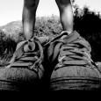 Die Fashion Weeks in Paris, Mailand und Berlin bieten die Schuhtrends. Auch Schuhe von Adidas liegen im Trend.